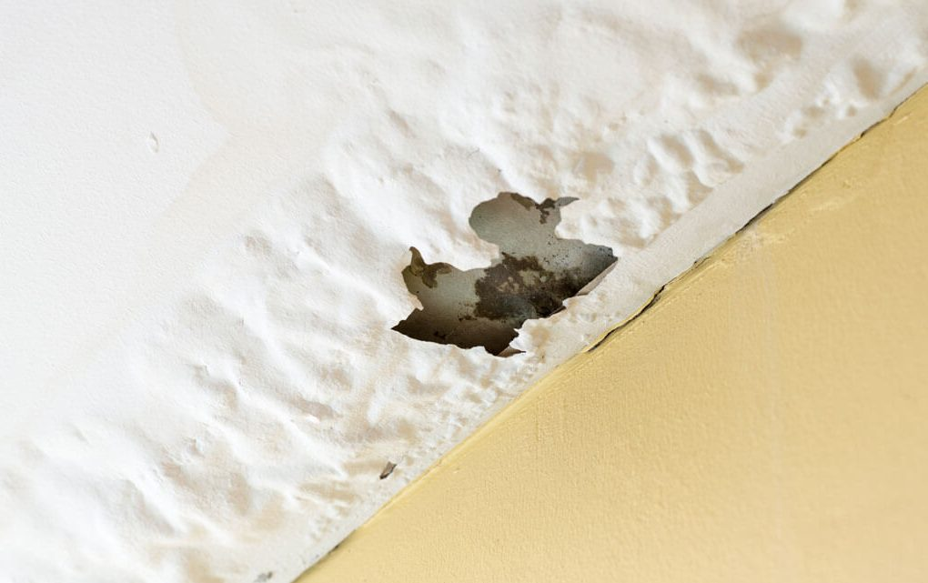 Water Damage in Your House
