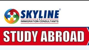 SKYLINE IMMIGRATION CONSULTANTS